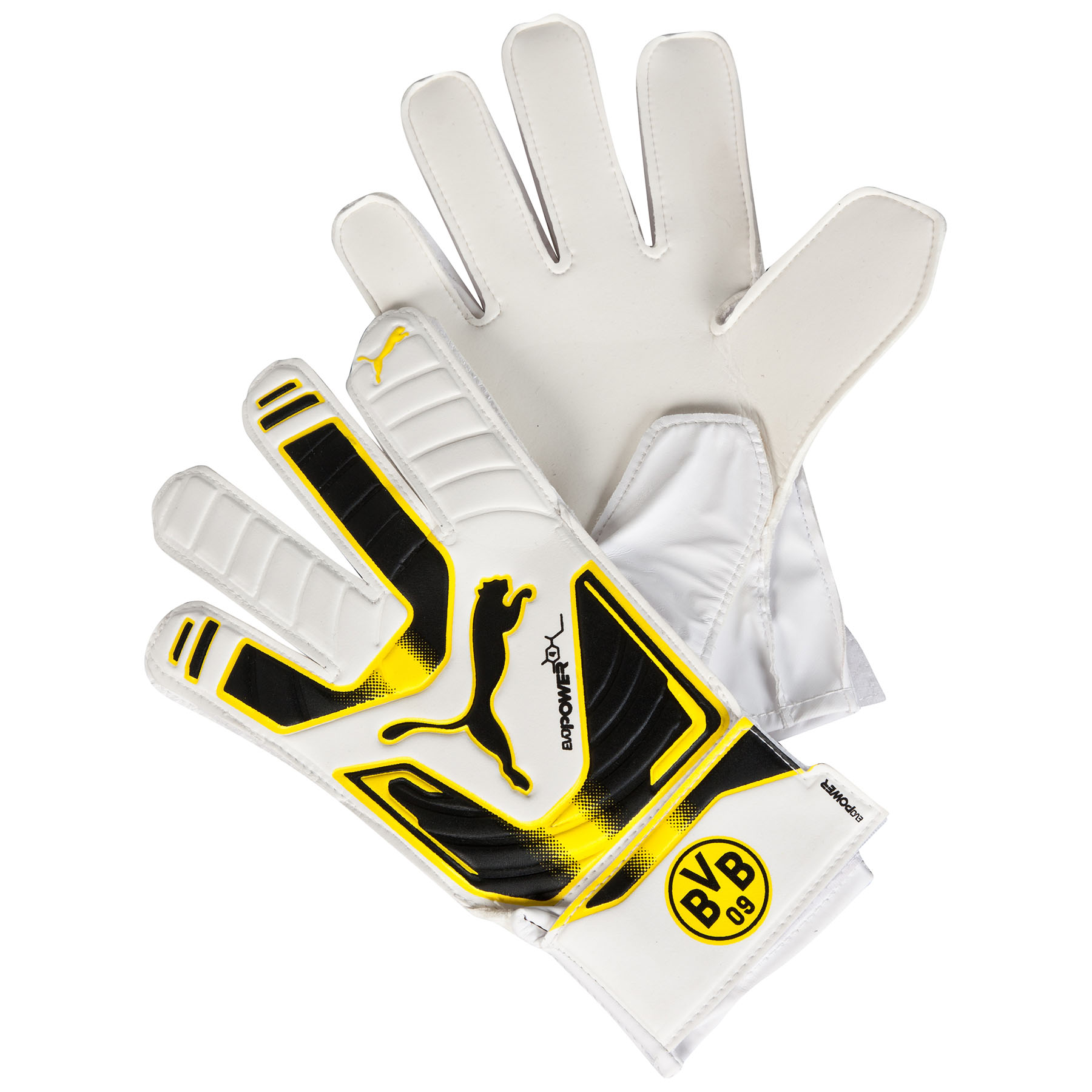 BVB evoPOWER 4 Goalkeeper Gloves White