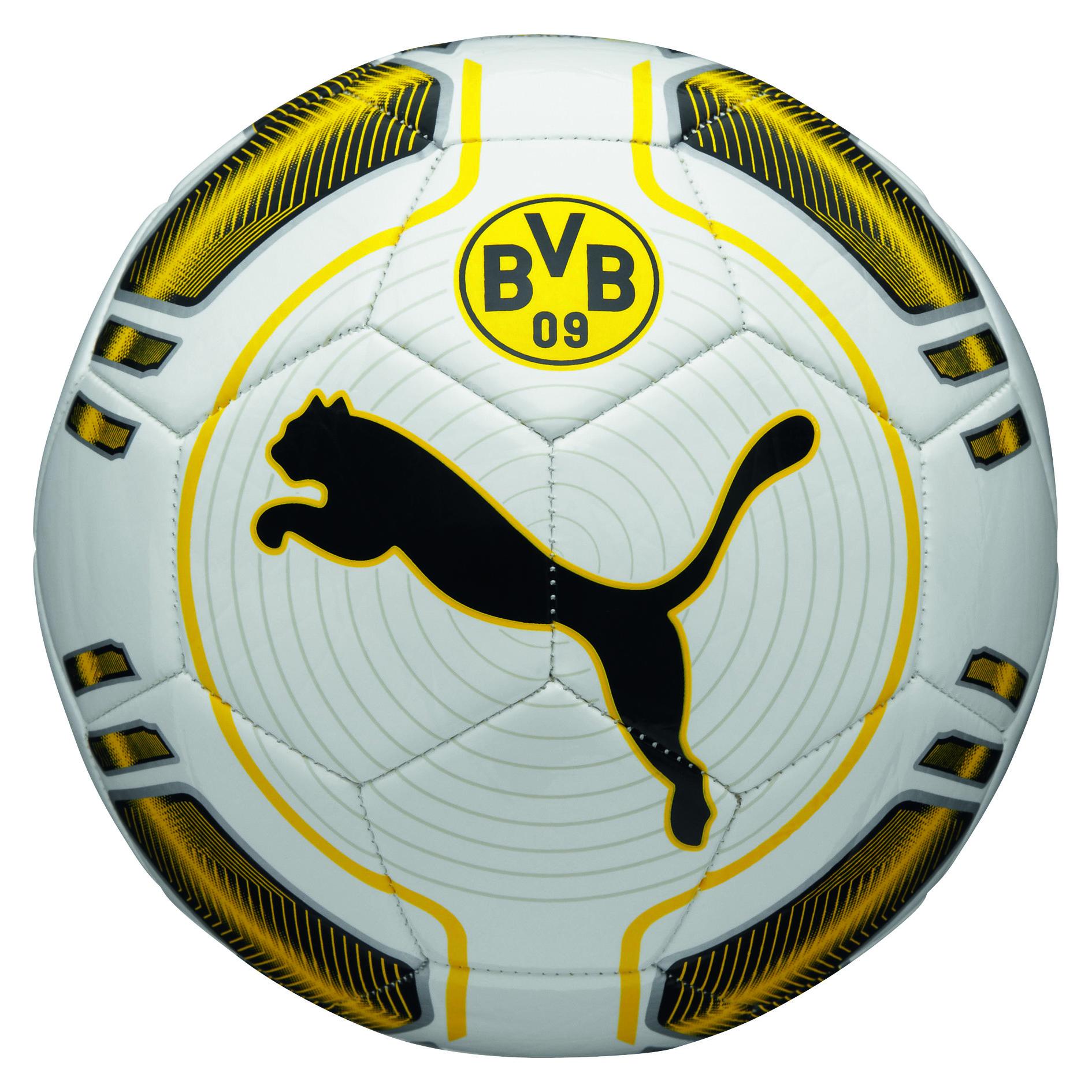 BVB evoPOWER 6 Trainer MS Ball