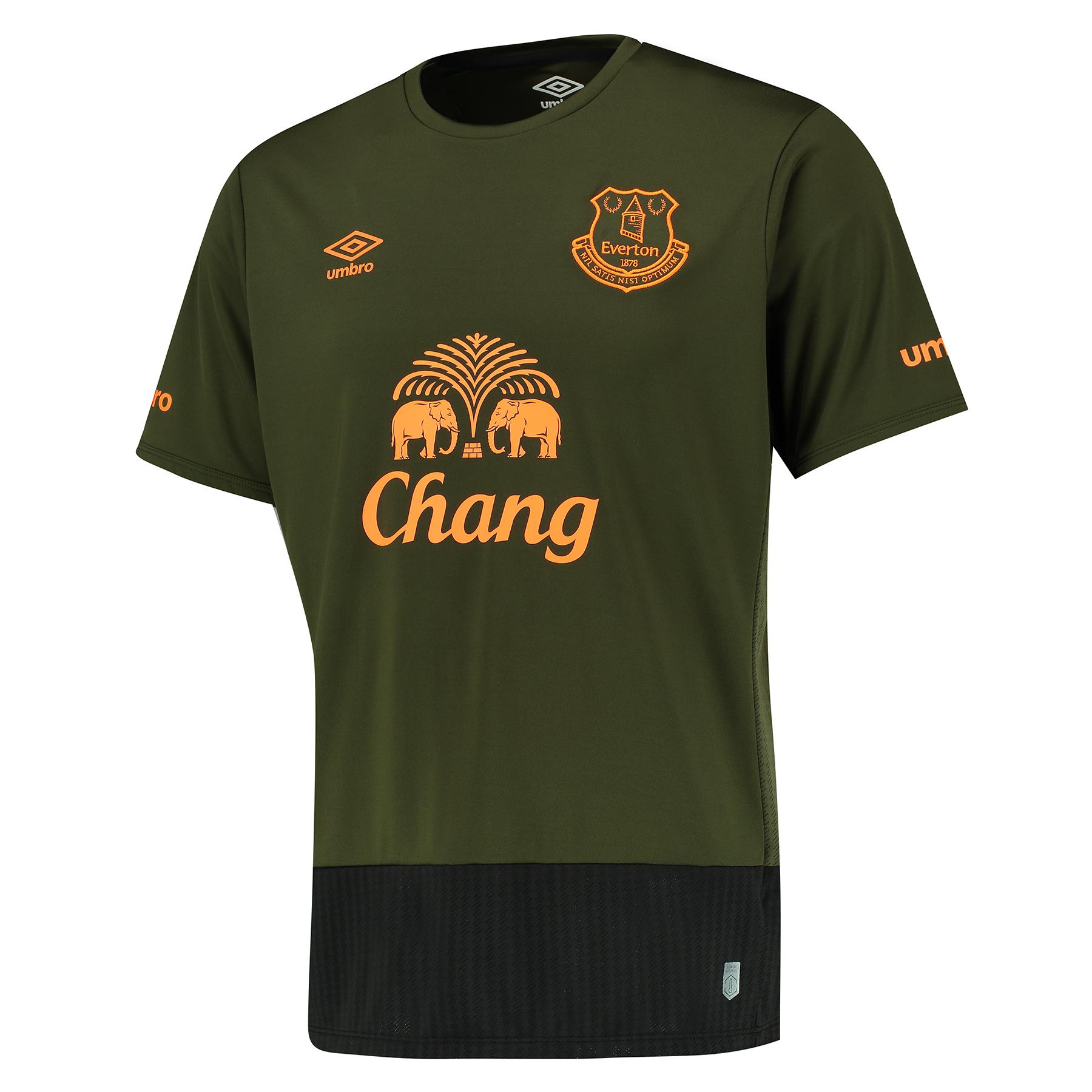 Everton 3rd Shirt 201516