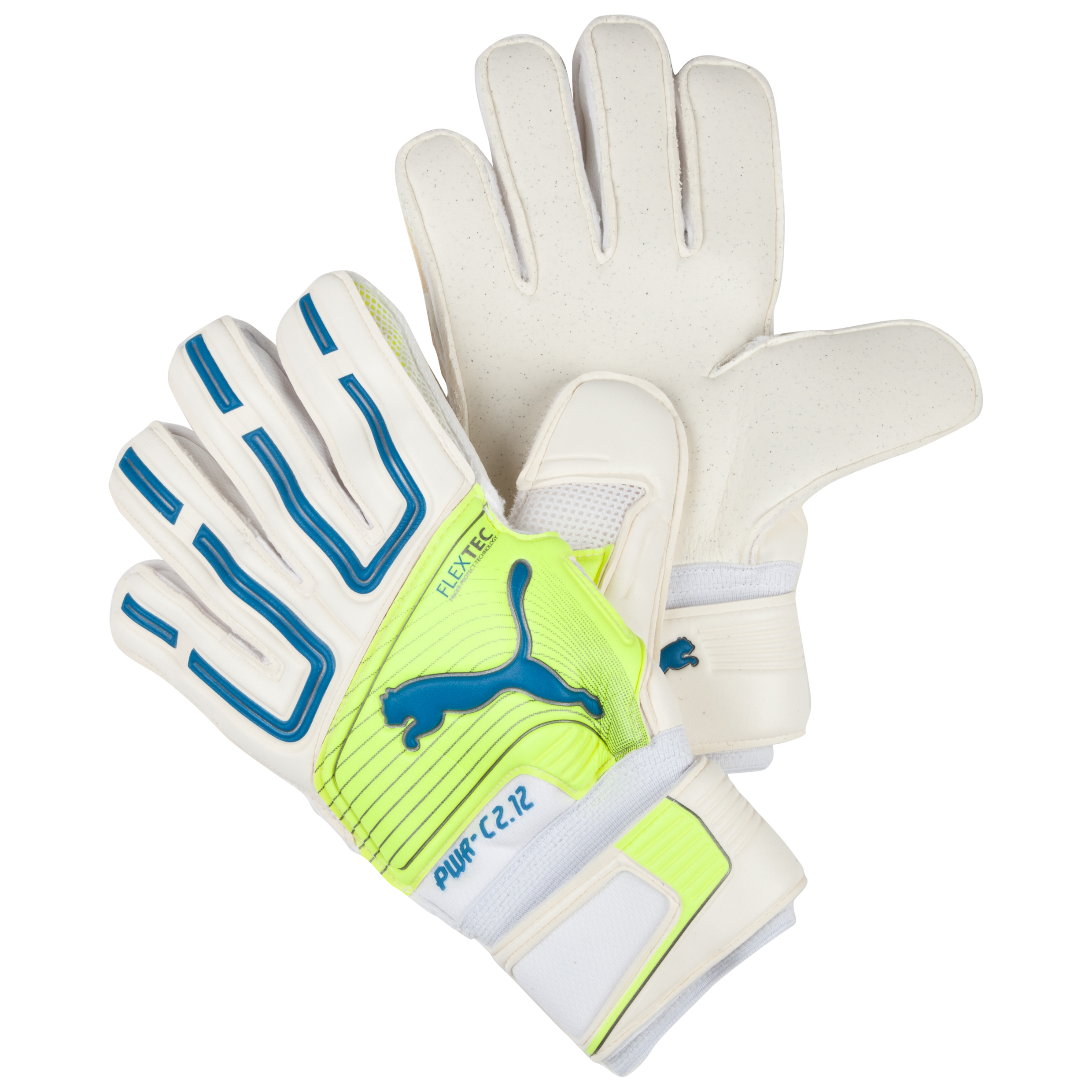 Puma PowerCat 2.12 Protect RC Goalkeeper Gloves White