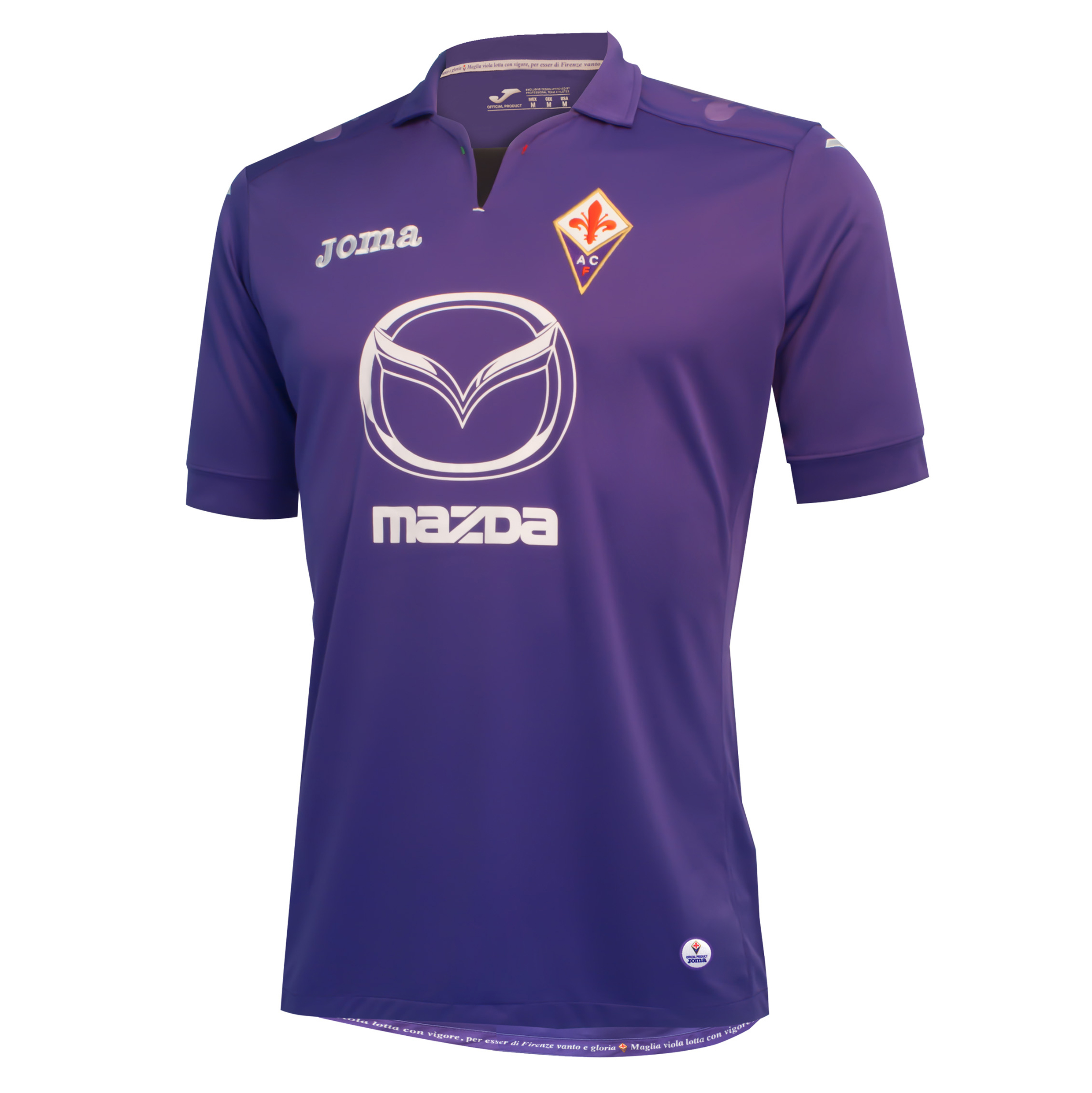 ACF Fiorentina Home Shirt 2013/14