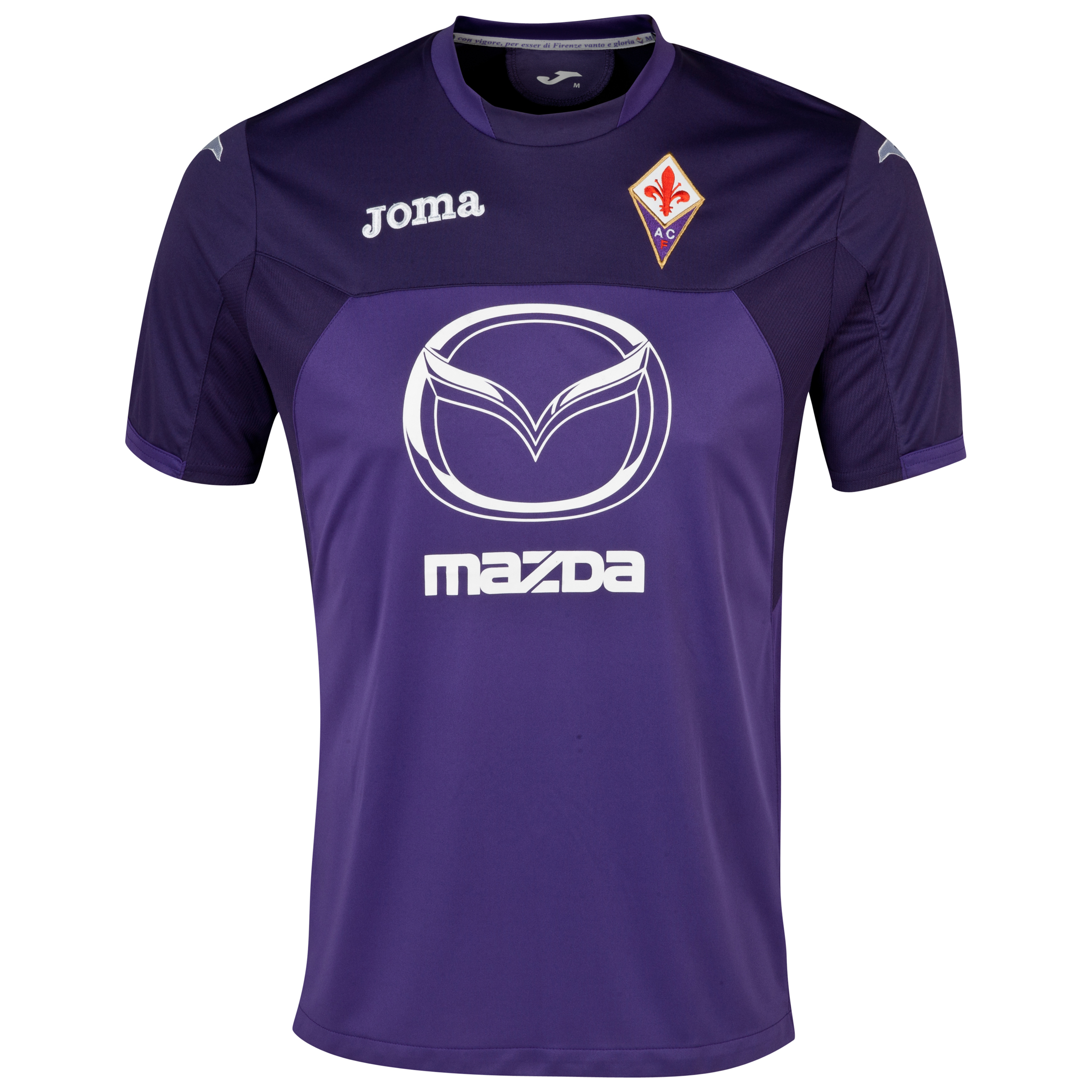 ACF Fiorentina Warm Up T-Shirt Purple