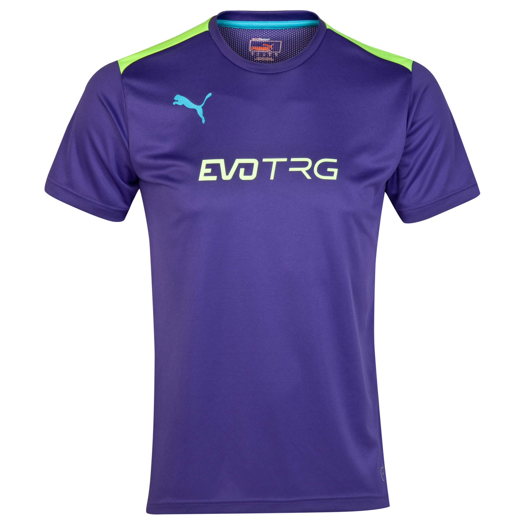 Puma IT evo Training Tee Purple