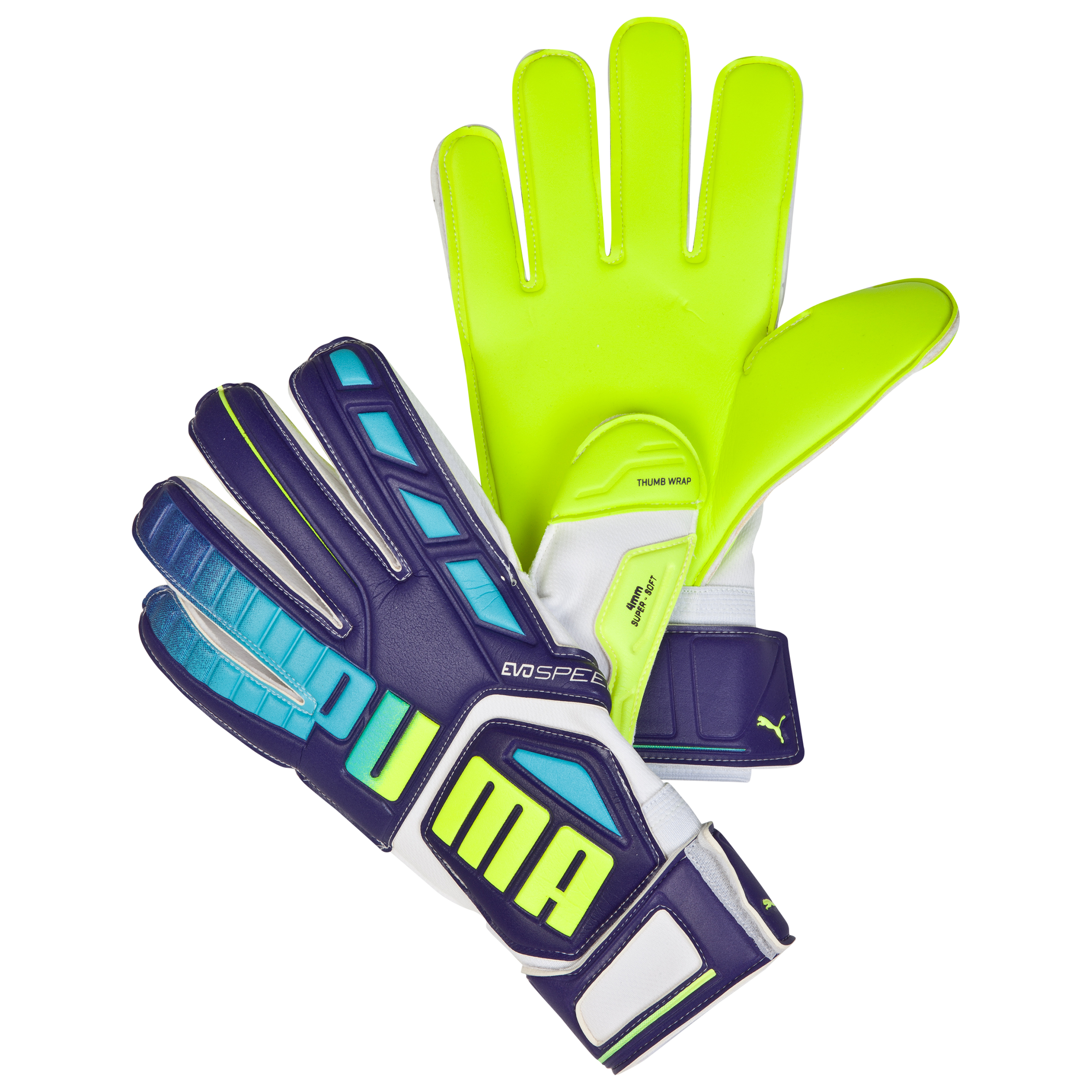 Puma evoSPEED 3.3 Goalkeeper Glove Purple