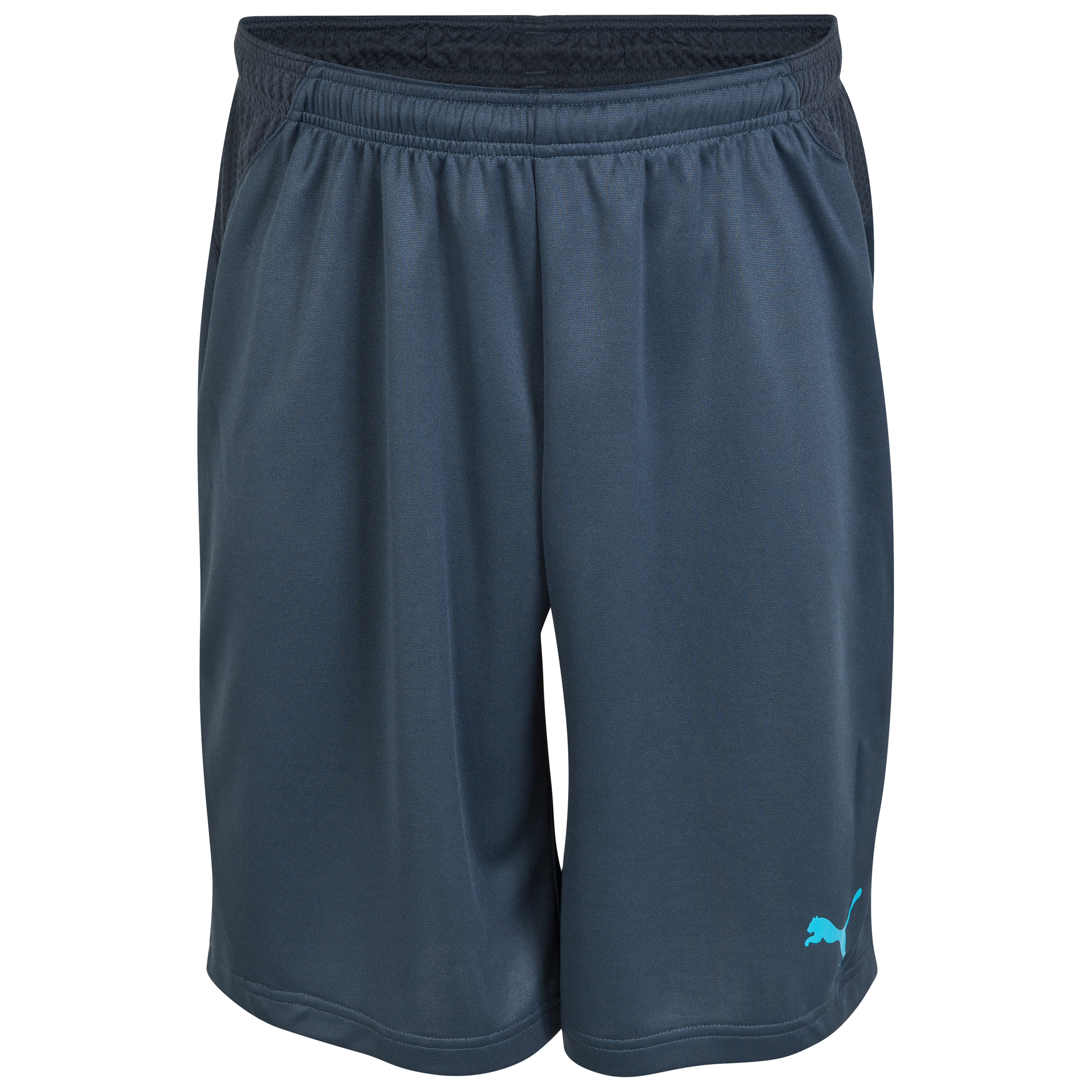 Puma evoPower TRICKS Shorts