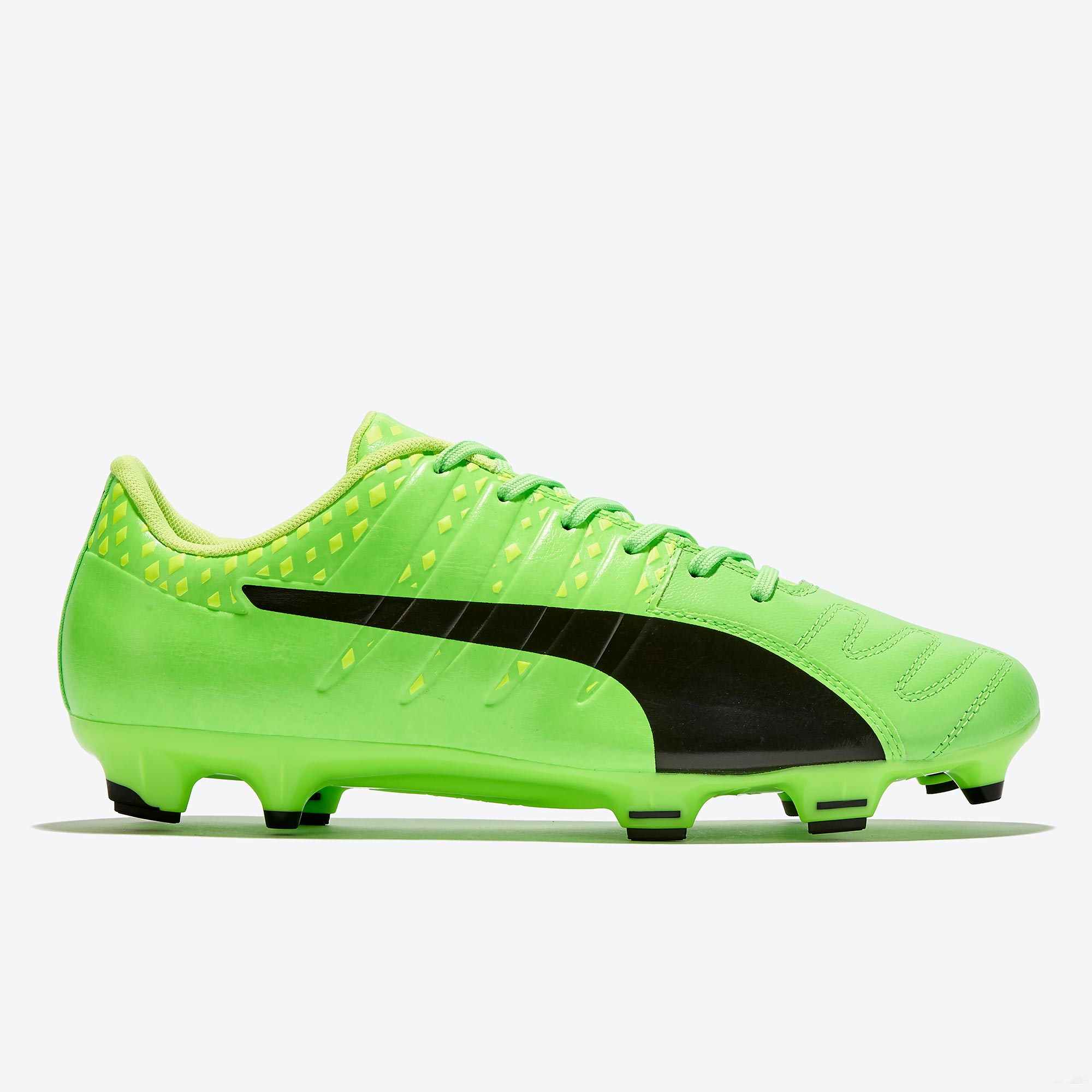 Puma evoPOWER Vigor 3 Leather FG Green Gecko