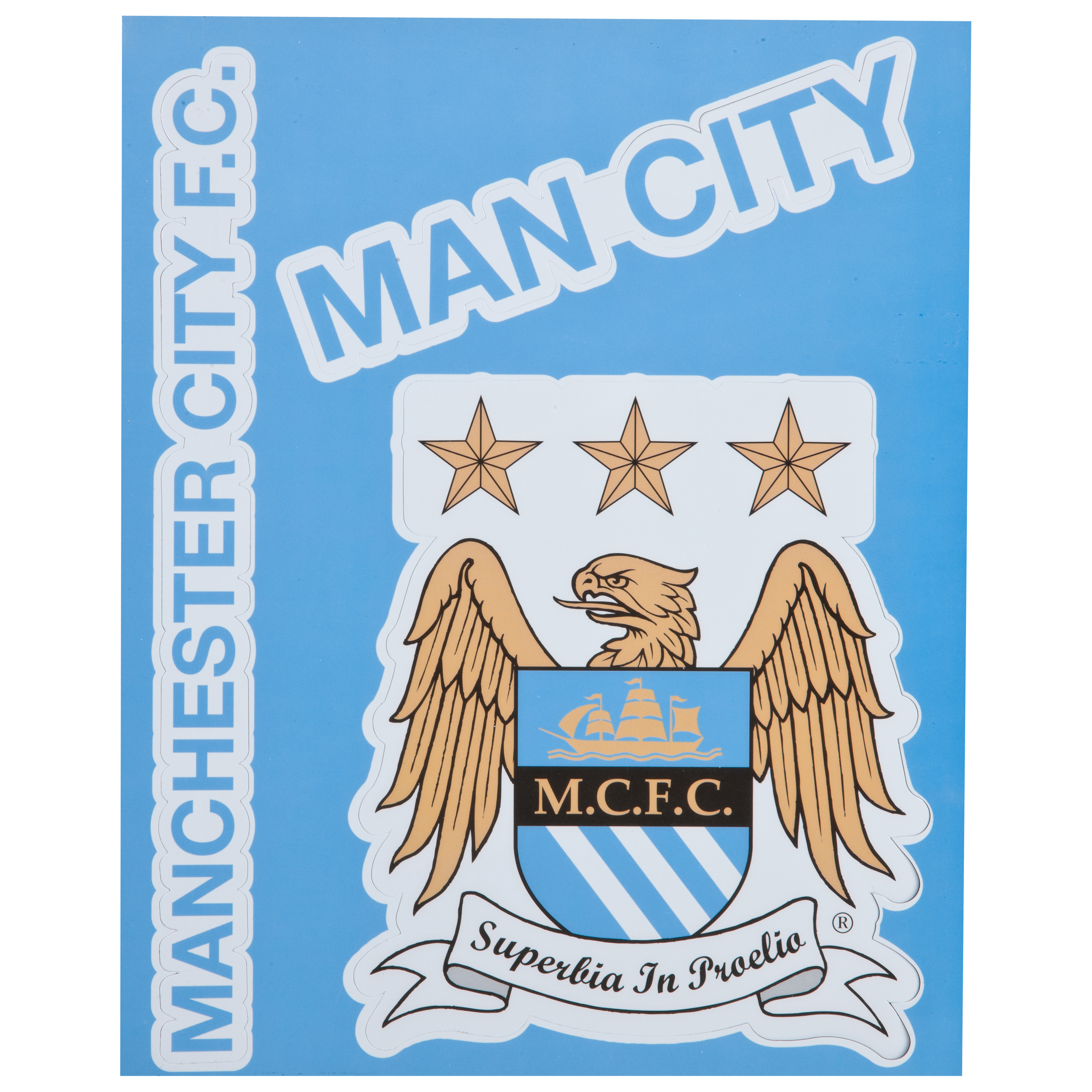 Manchester City Vinyl Fridge Magnets