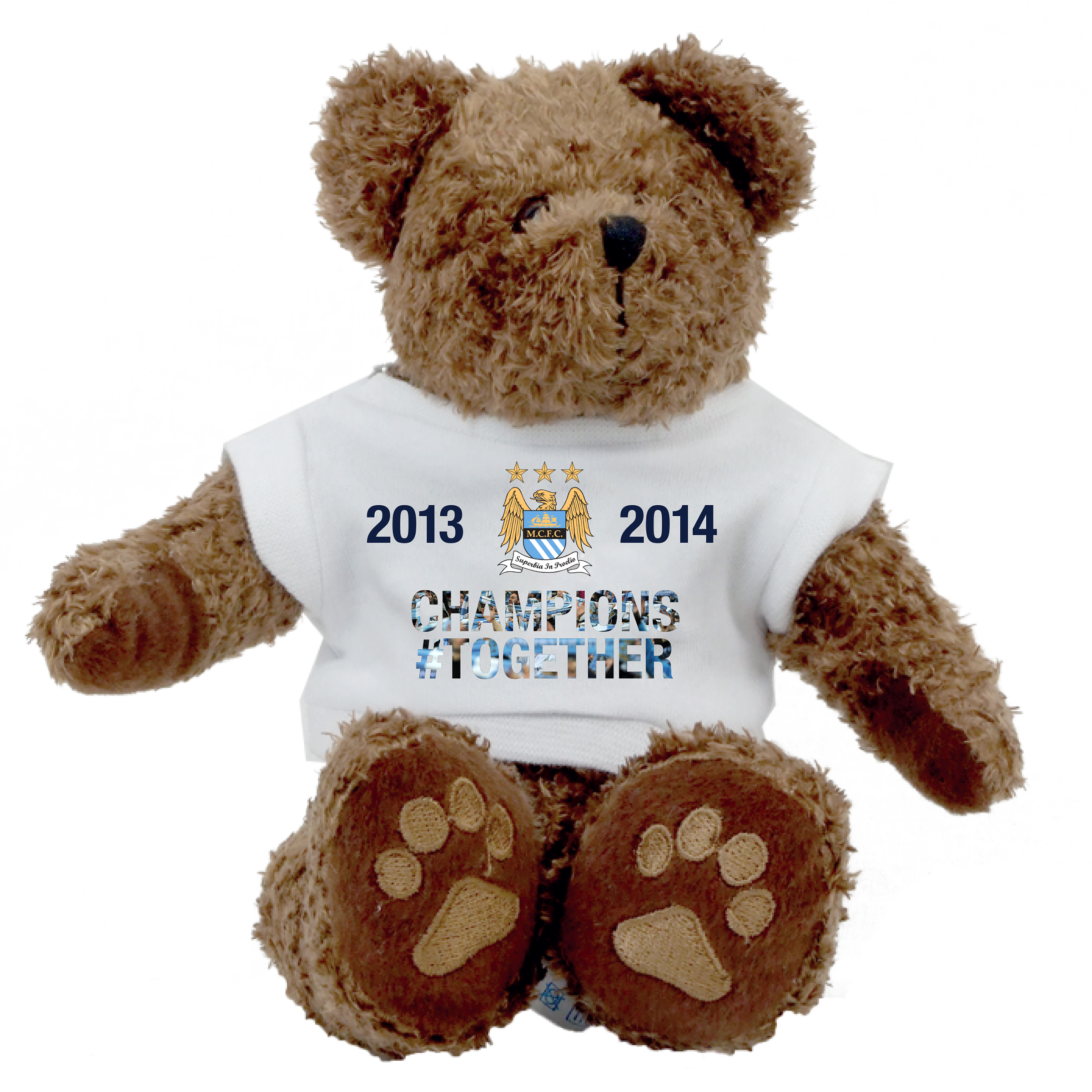 Manchester City Champions #Together Teddy