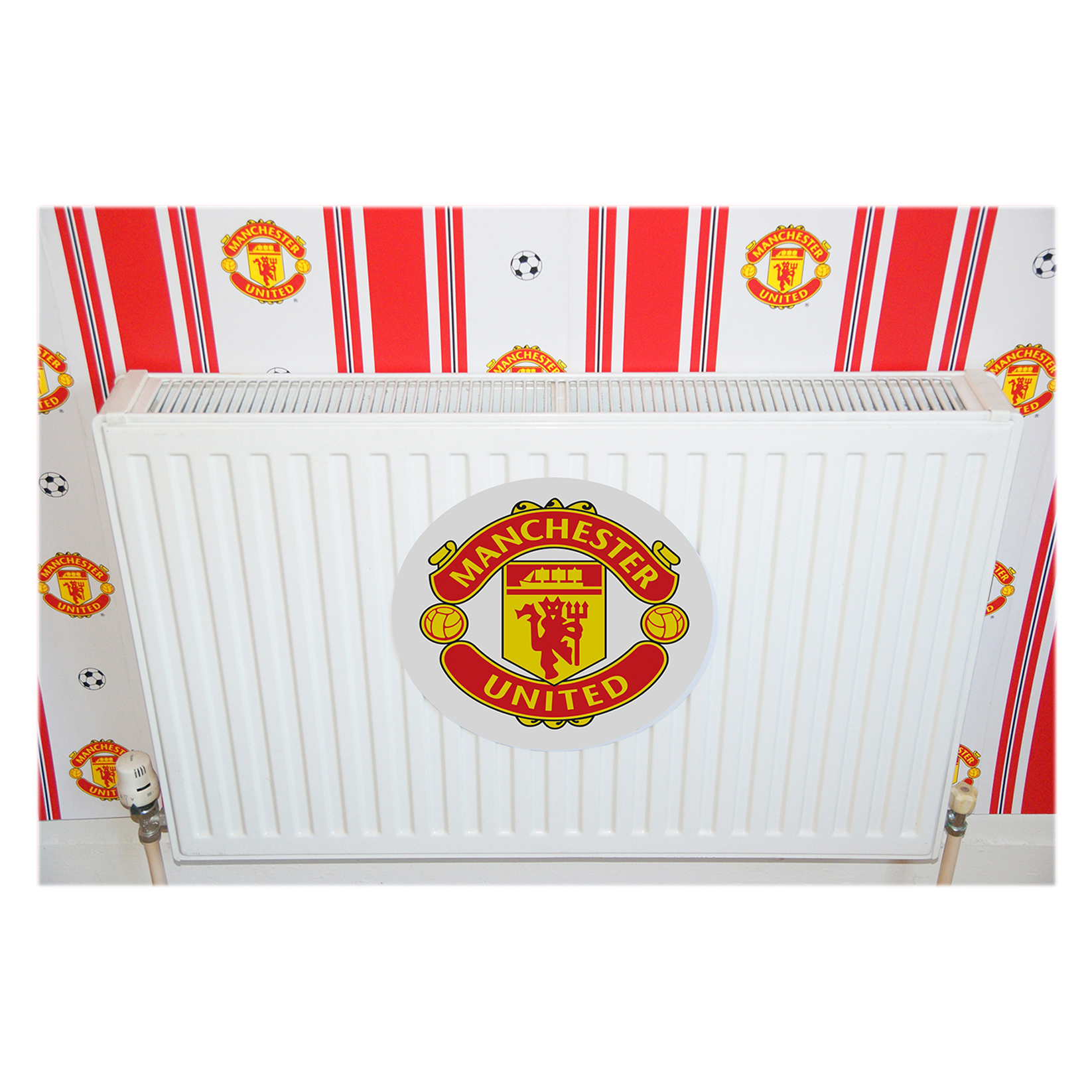 Manchester United Magnetic Crest
