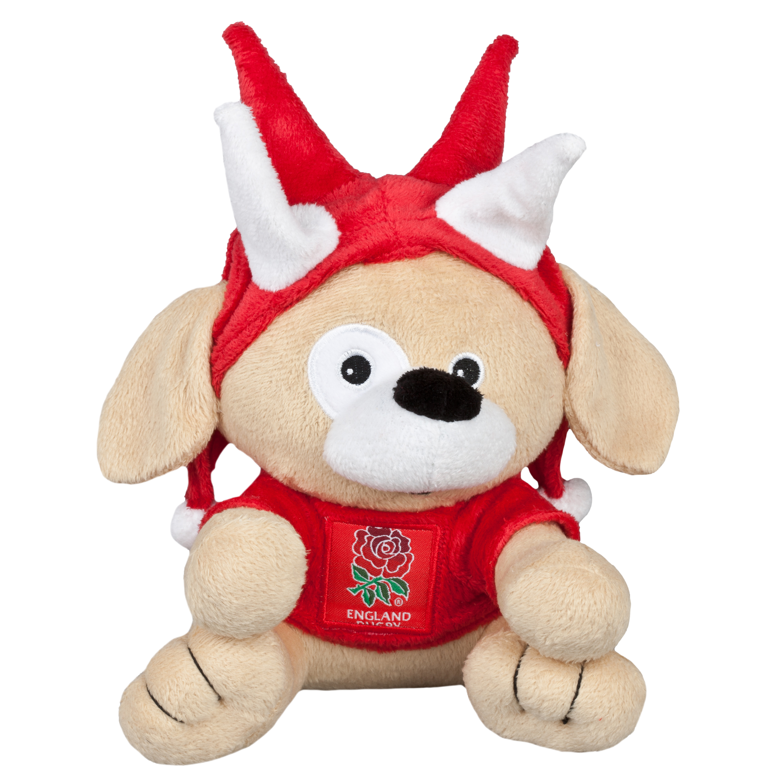 England Rugby Dog with Spiked Hat
