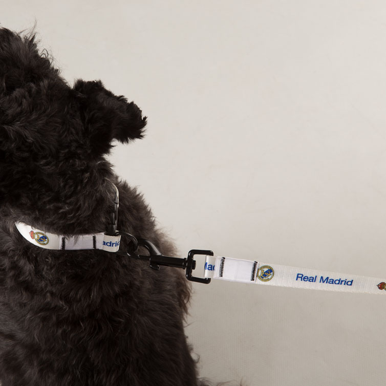 Image of Real Madrid Pet Collar - Large - 50cm, White