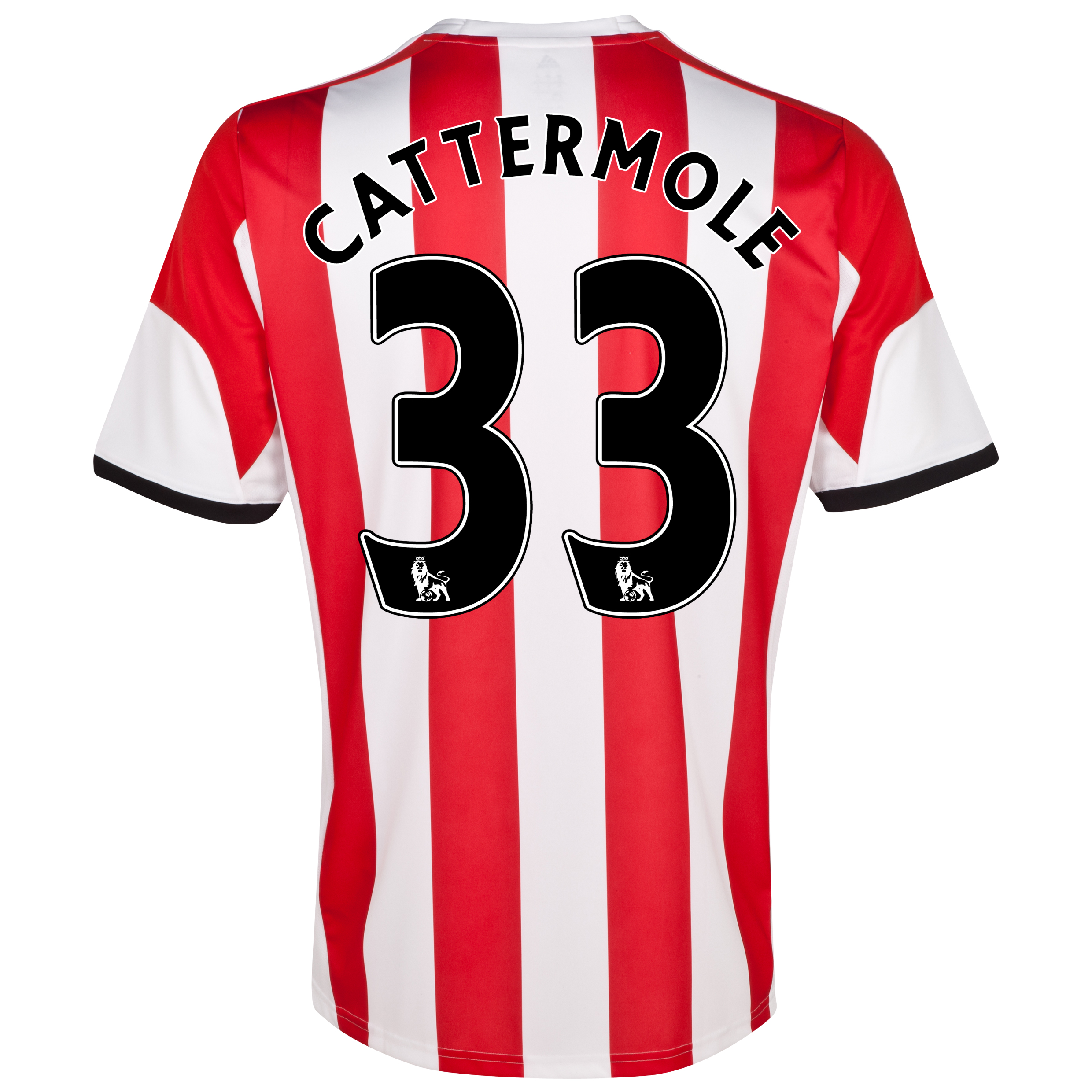 Sunderland Home Shirt 2013/14 - Junior with Cattermole 33 printing