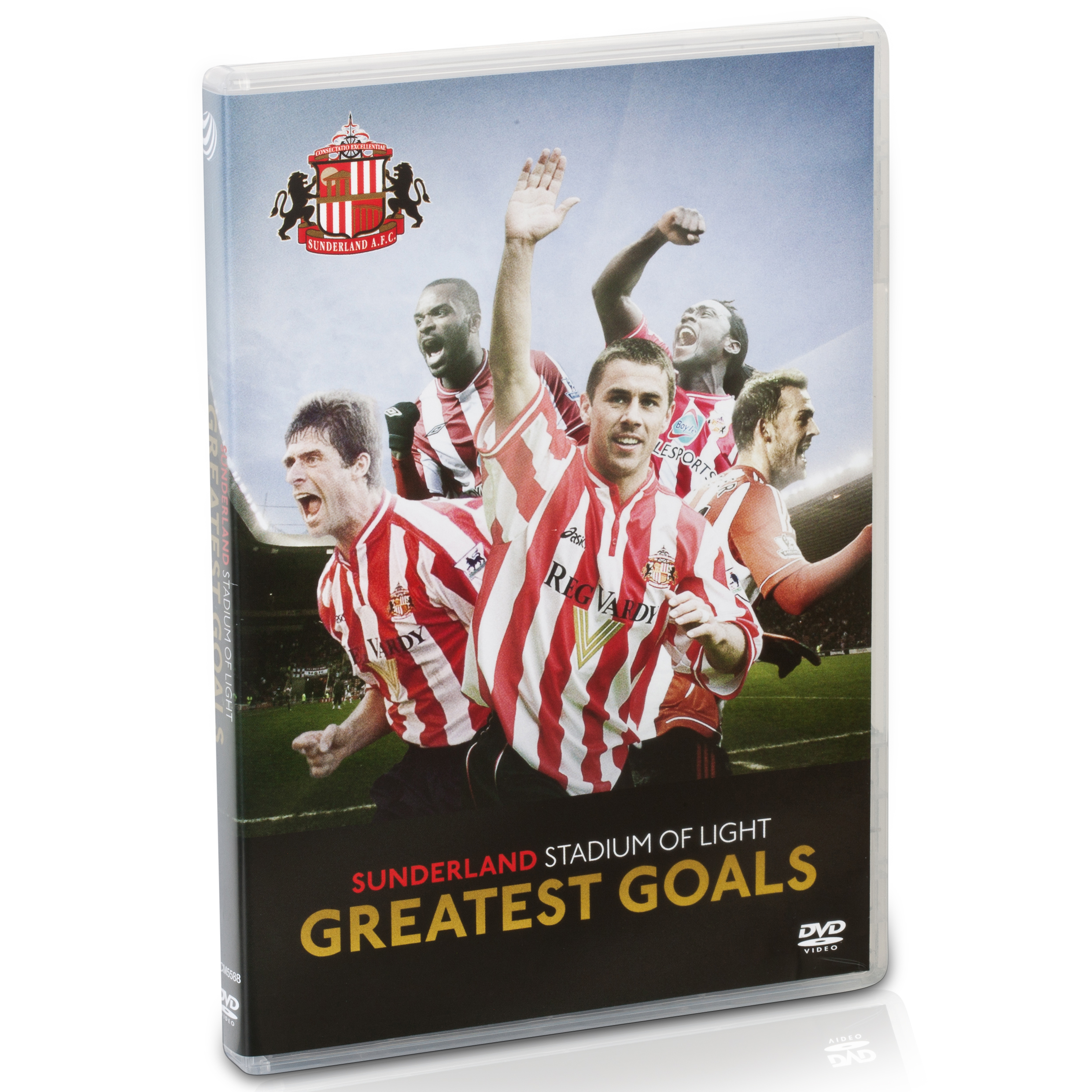 Sunderland Stadium of Light Goals